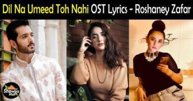 Dil Na Umeed Toh Nahi OST Lyrics