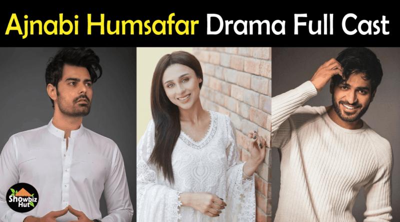 Ajnabi Humsafar Drama Cast