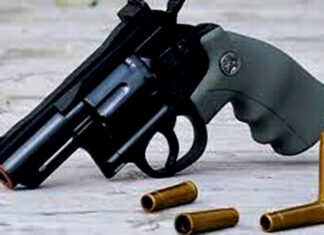 in illegal arms recovery Bikaner, in arrest Hanumangarh tops