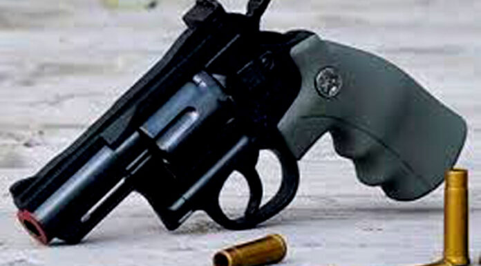 in illegal arms recovery Bikaner, in arrest Hanumangarh tops