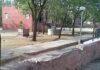 Lok seva sansthan expressed anger over the plight of public parks