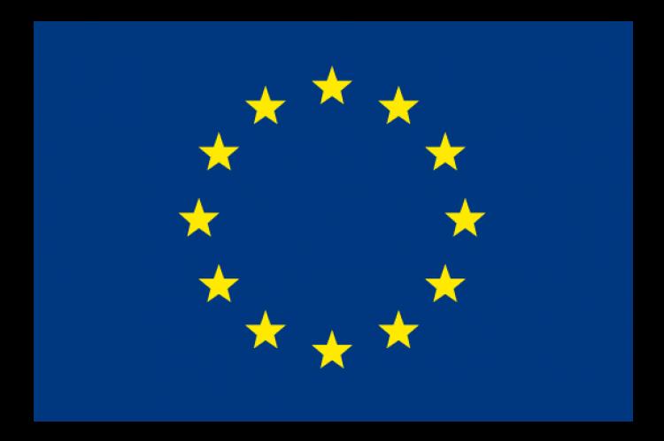 Logo_euro_flag