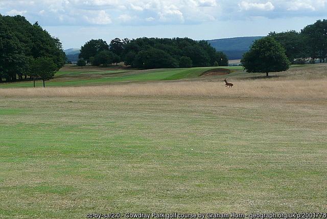 Cowdray Park Golf Course