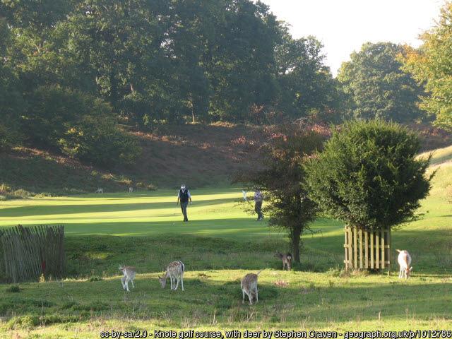 Knole Park Golf Course
