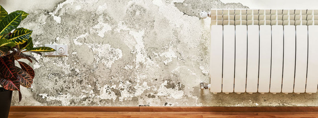 Rising Damp Specialists Stoke on Trent