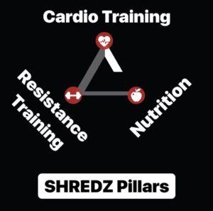 SHREDZ Pillars 1