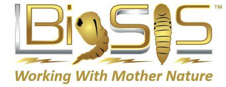 BigSIS logo