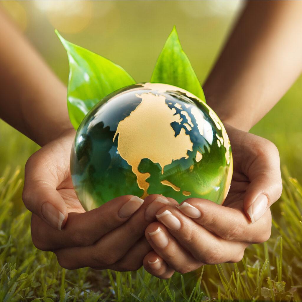 BigSIS sustainable world