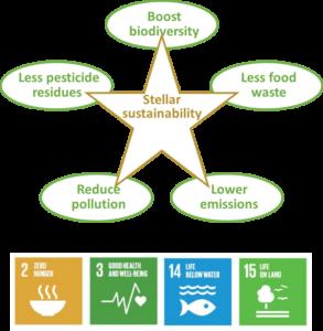 Stellar sustainability