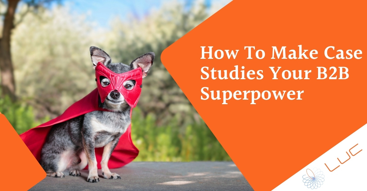 how to make case studies your B2B superpower - Lucdigi