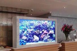 Virtual fish tank