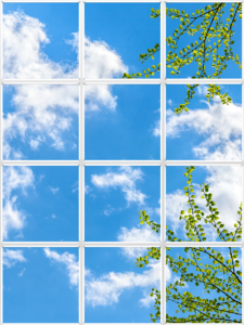 Luminous virtual window for ceiling with light green leaves and vibrant blue sky