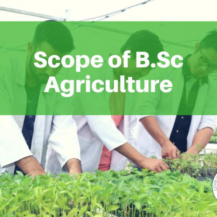 Scope of B.Sc Agriculture