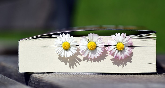 Need a Push? Five Books to Keep You Up!