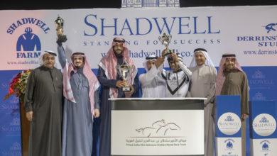 Photo of برعاية حمدان بن راشد آل مكتوم  إنطلاقة تاريخية لكرنفال شادويل لسباقات الخيول العربية الأصيلة في السعودية
