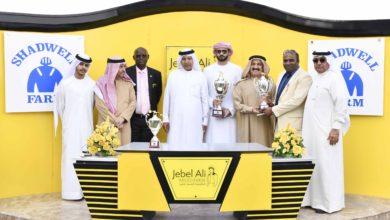 Photo of السباق السابع للخيول بمضمار جبل علي