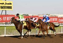 Photo of السباق الثامن للخيول فى جبل علي