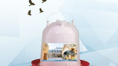 "Photo of A qualitative initiative for ""Birds' water quench"""