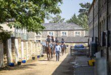 Photo of كولنجتون: دعم حمدان بن راشد قاد الخيول العربية للتوهج في بريطانيا