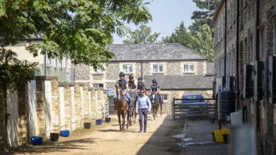 Photo of Hamdan's trainer pins hopes on Halib des Forges for Sunday