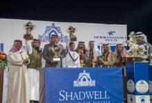 Photo of مهرجان شادويل العالمي يخطف الأضواء في السعودية برعاية حمدان بن راشد