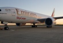 Photo of Emirates SkyCargo operates special charters to fly cherries from Chile