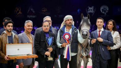 Photo of مربط دبي الأفضل في بطولة العالم لجمال الخيل العربي 2019 بفرنسا