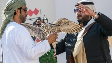 Photo of UAE Falconers League Kick Starts Competition with 10 teams in Al Ruwayyah