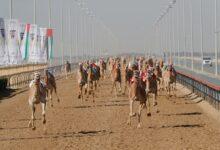 Photo of صاحب السمو محمد بن راشد يشهد تحديات اليوم الثالث لمهرجان سمو ولي عهد دبي للهجن