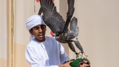 Photo of Fakhr Al Ajyal Championship for Falconry set record for most number of young falconers