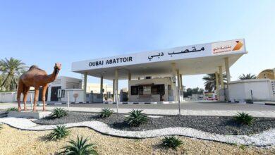 Photo of بلدية دبي تسخّر التطبيقات الذكية لطلب الأضاحي وإسعاد متعامليها