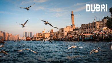 """Photo of """"دبي للسياحة"""" تتبنّى حلول السحابة الذكية من """"مايكروسوفت"""" لتقديم خدمات مميّزة لشركائها"""