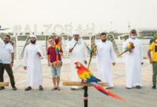 Photo of سياحة عجمان تستضيف عرضا حيا للطيور الناطقة في محمية الزوراء الطبيعية