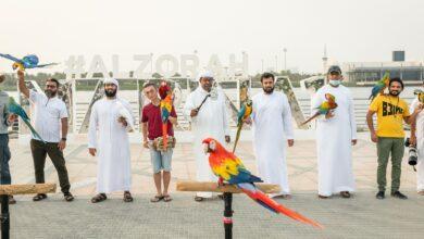 Photo of Ajman Tourism hosts a live parrot show at Al Zorah Natural Reserve