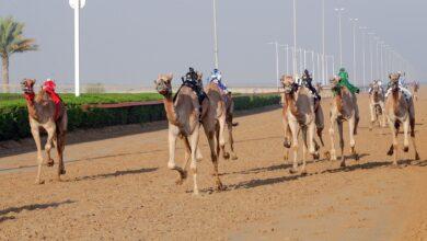 Photo of تألق لافت للشعارات الكبرى في انطلاقة الجولة الثالثة لتمهيدي المرموم