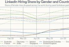 Photo of معدّلات توظيف المرأة ترتفع في الإمارات بعد إعادة فتح القطاعات الاقتصادية فيها