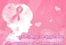 Photo of تيك توك تنشر محتوى تثقيفي للتوعية بسرطان الثدي خلال شهر أكتوبر