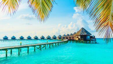 "Photo of ""الإمارات للعطلات"" توفر برامج مثالية في المالديف"