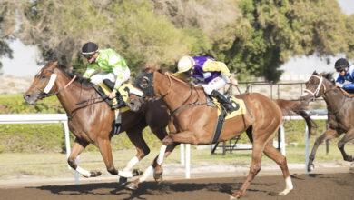 Photo of مضمار جبل علي يستضيف السباق الرابع للخيول