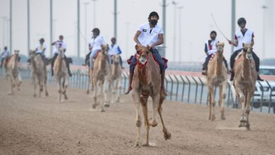 Photo of Emiratis Al Shamsi and Yahya Al Ketbi dominate 2nd preliminary race of National Day Camel Marathon