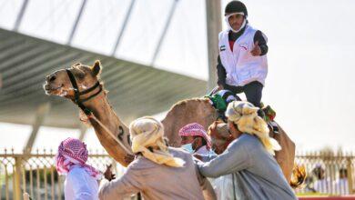 Photo of Emirati Sultan Al Shamsi dominates 6th National Day Camel Marathon in Dubai