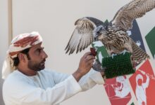 Photo of Fakhr Al Ajyal (Pride of Generations) Falconry Championship to kick off on January 30