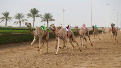 Photo of (معراض) و(العابر) يلفتان الانظار في تحديات اليذاع بالمرموم
