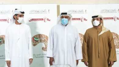 Photo of Sheikhs Category in the UAE Falconers League to commence on February 9 in Dubai