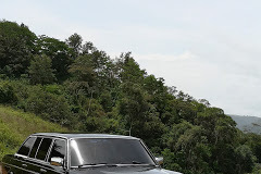 MOUNTAIN FOREST CARTAGO COSTA RICA. 300D W123 LIMO TOURS