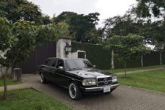 COSTA RICA PRIVATE ESTATE. W123 LANG 300D MERCEDES LIMOUSINE TOURS