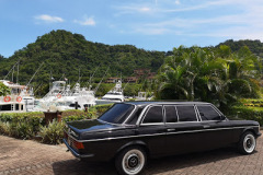 LOS SUENOS MARINA AND RESORT WITH A MERCEDES 300D LIMOUSINE
