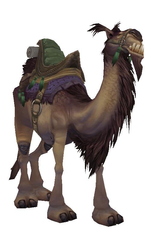 Brown Riding Camel