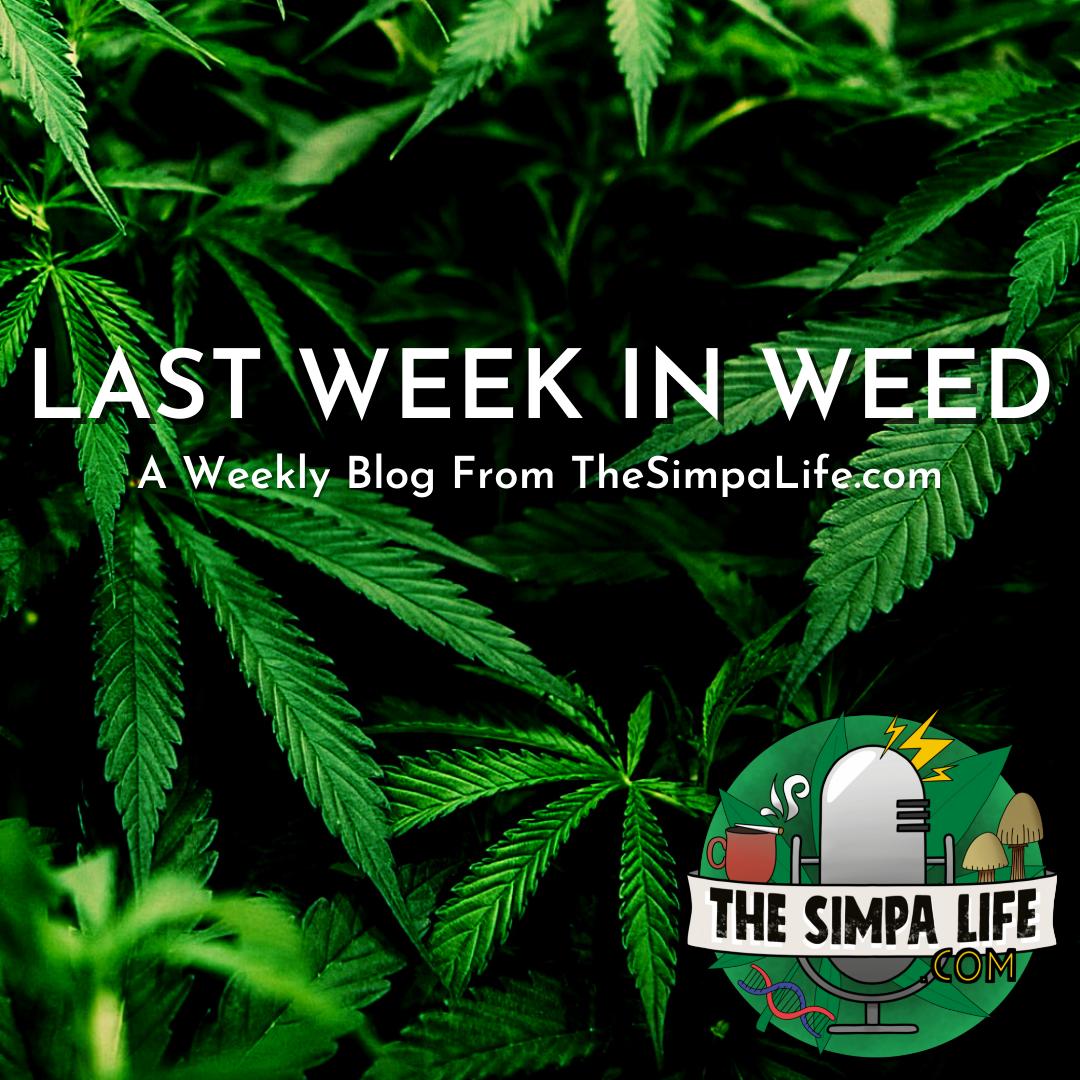 Last Week in Weed Issue 41