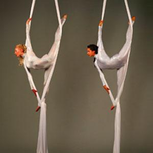Synchronised Silks
